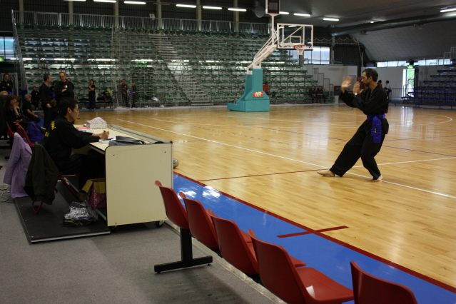 Pesaro 2010 (9)